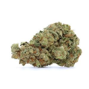 Green Kandy Jack Image
